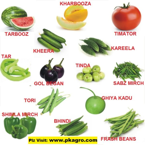 14 Summer Vegetables Pack
